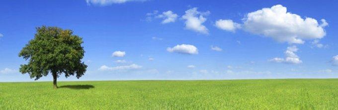 Cégünk elérhető árakon forgalmaz minőségi öko termékeket.
