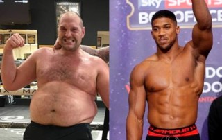 profi boksz
